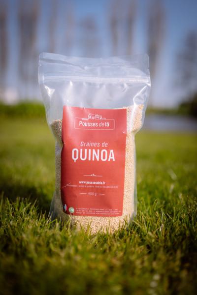 Quinoa 400 gr
